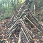 bushcraft shelter building